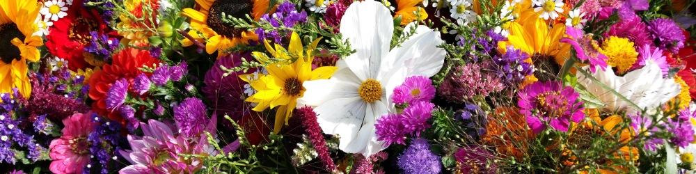 Полевые цветы для уникальных букетов – природная красота для утонченных натур