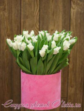 Восхитительные, изящные белые тюльпаны