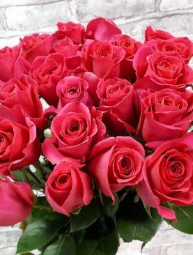 Ароматная роза Пинк Флоид