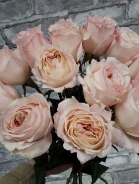 Пионовидная роза Давид Остин